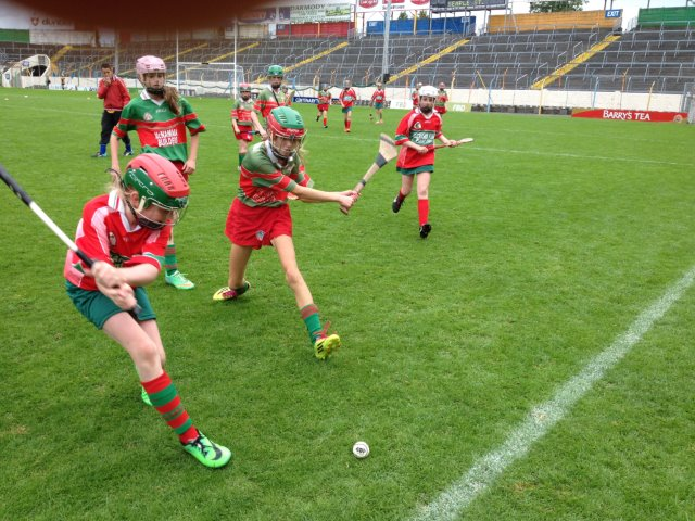 Camogie U6's, U8's and U10's 2015 Training Commences This Weekend