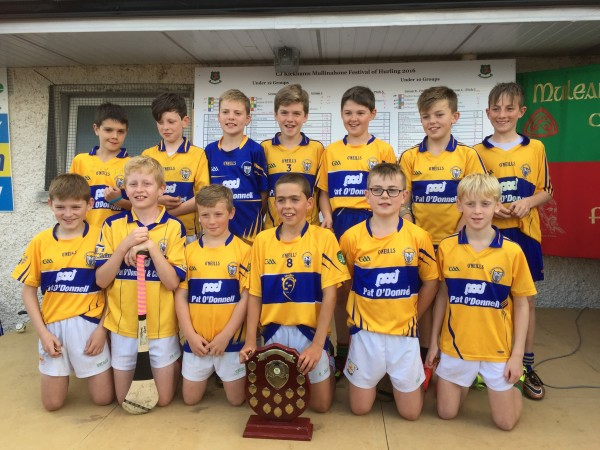 Mullinahone B Final Winners