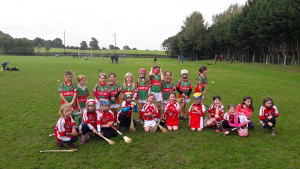 cont'd ---- U8 Camogie Finishes for 2016