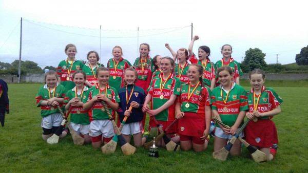 U11 camogie girls win div 2 final Tournament in Tulla