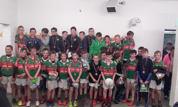 U12 Hurlers Head to Cusack Park on Wednesday