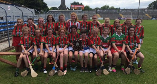 Quin School Camogie Division 2 Champions