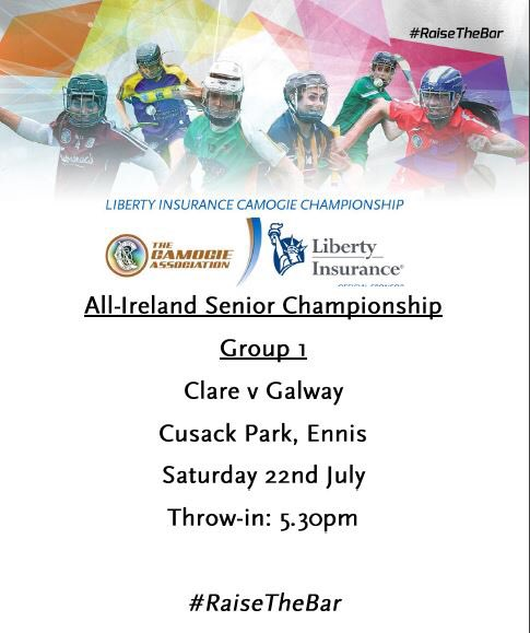 Clooney Quin County Camogie/Hurling Stars in action