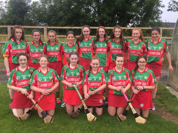 Club and County Camogie News