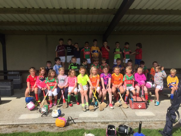 Clooney Quin GAA Club annual Hurling and Football camp
