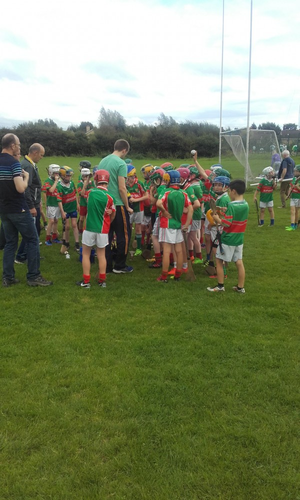 U11 Hurlers will play neighbours in next round of games