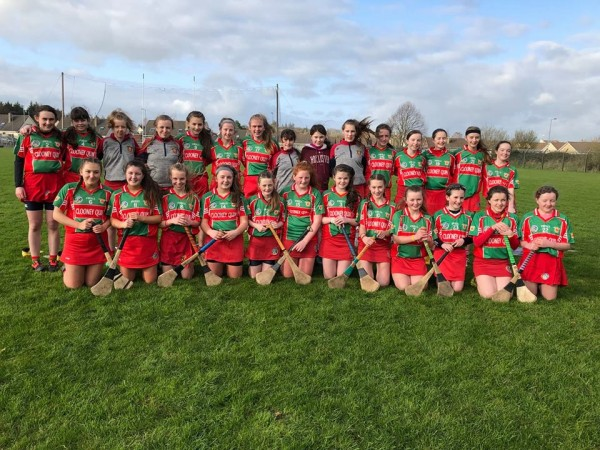 Clooney Quin Camogie in Féile Semi Final Sunday 1:45pm